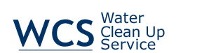 Fast Water Clean Up Service